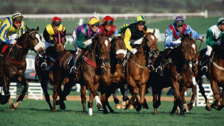 ¿Cómo hacer apuestas online en carreras de caballos en Colombia?