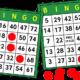 ¿Cómo ganar en el bingo?